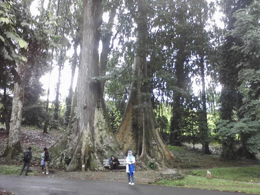 Mitos Kebun Raya Bogor