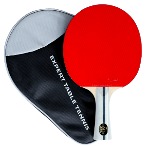 Surprising Our Story Palio By Expert Table Tennis Download Free Architecture Designs Grimeyleaguecom