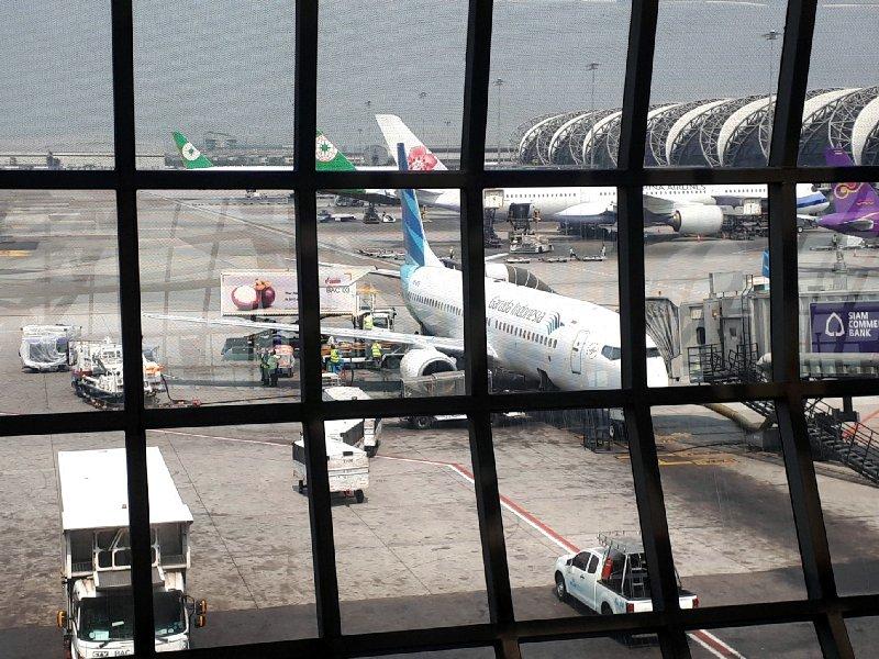 boeing 737-800 garuda