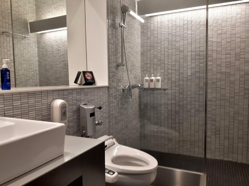 ana business lounge narita review shower room