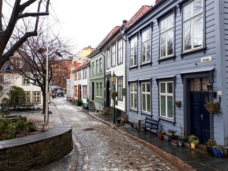 bergen street cobblestones
