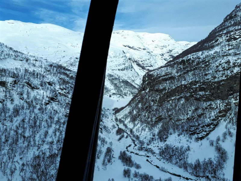 view flam railway avalanche gallery train