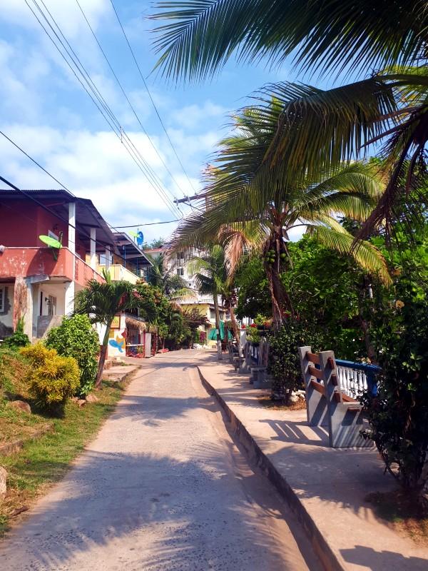 tobago town island day trip