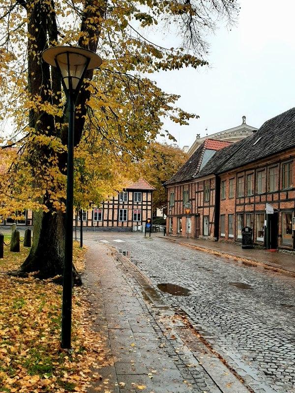 cobblestone street lund sweden