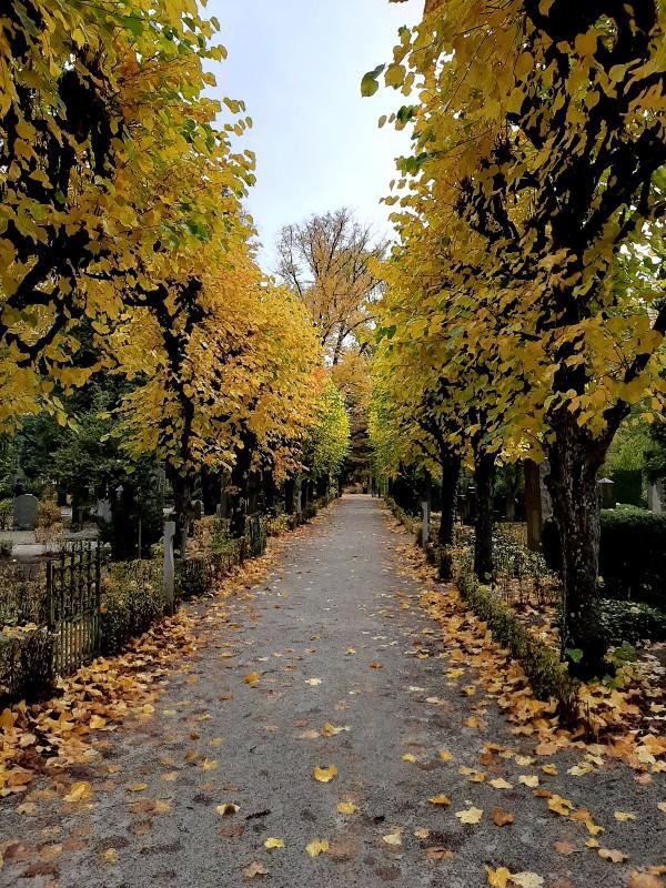 botanical garden cemetery