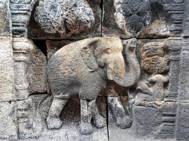 elephant relief borobudur