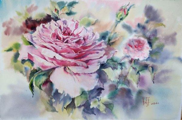 Картина акварель Нежная роза
