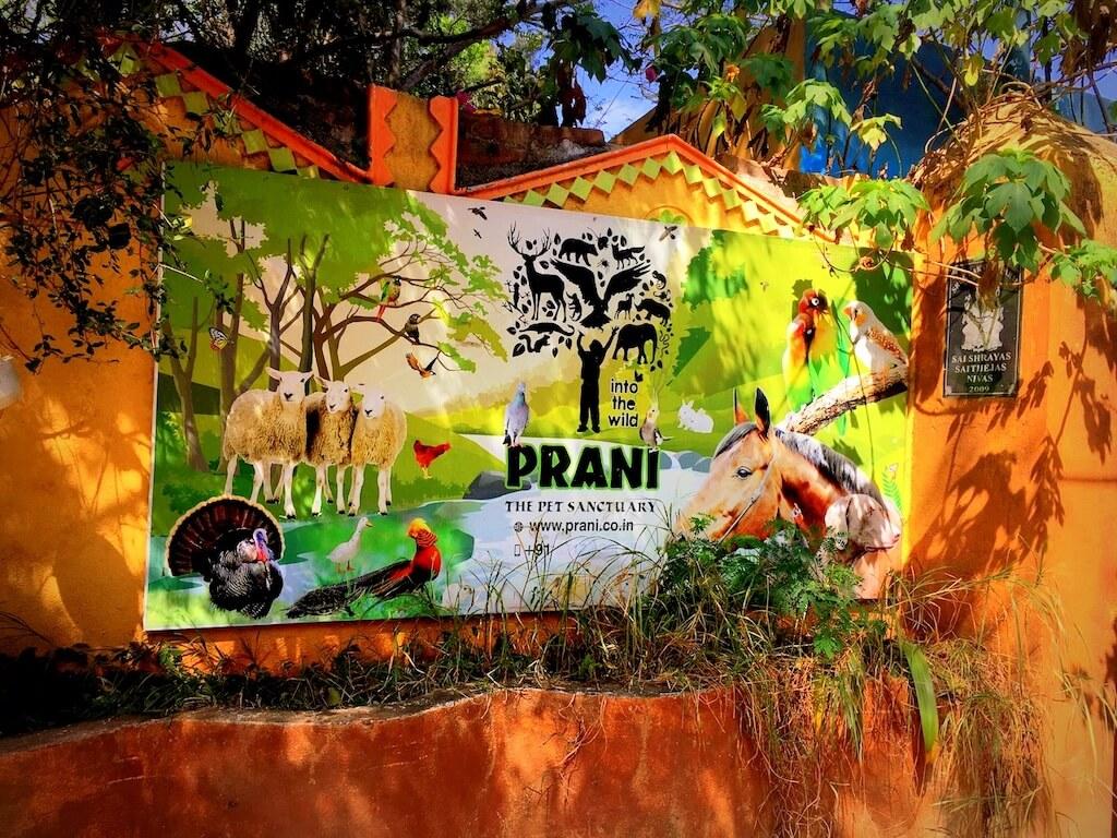 Prani-The Pet Sanctuary