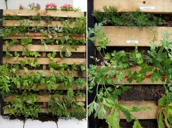 pallet vertical garden project DIY Furniture Projects: Pallet Furniture Plans   Pallet
