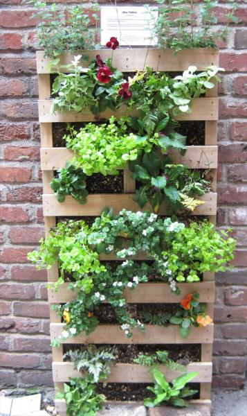pallet vertical garden project 25 DIY Pallet Garden Projects   Pallet Furniture Plans