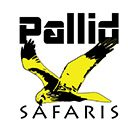 Pallid Safaris & Travel