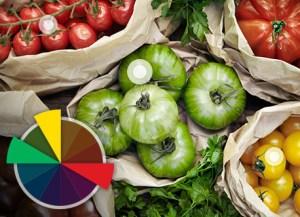 usando o circulo das cores em Fotos Que Geram Vendas Através das Redes Sociais