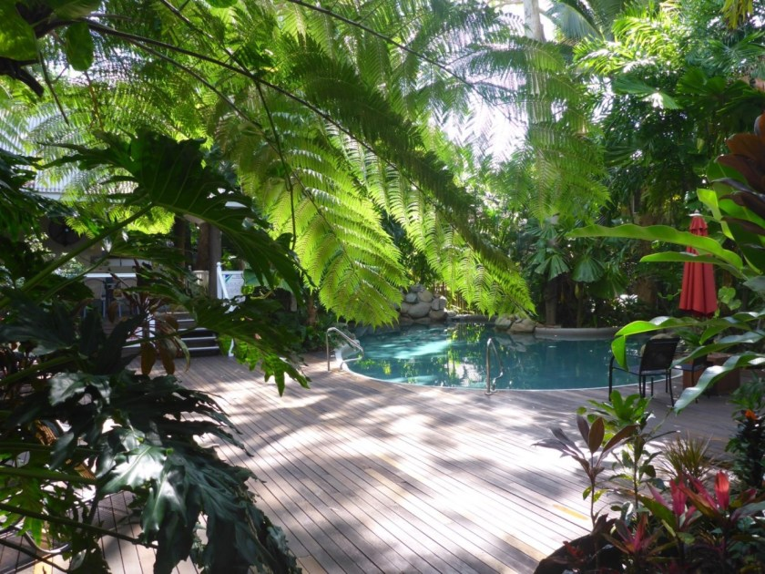 Pool and Deck Palm Cove Tropic Apartments