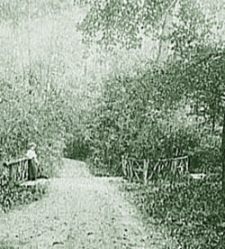 PA path between Palmer Woods and Palmer Park, circa 1895 (courtesy of Library of Congress)
