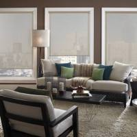 Porter Preston remote controlled window shades are great for blocking sun glare, fading sun rays that damage floors, and furniture and reducing heat gain. We measure each opening for free.