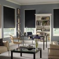 Porter Preston blackout roller shades are perfect for a theater room to block sun. They are great for bedrooms too, blocking light from a street lamp. Call Palmetto Outdoor Spaces for a free roller shade estimate.