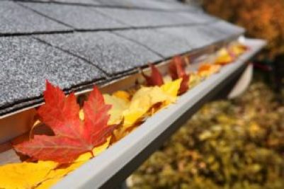 Leaves in a rain gutter Roofing Services Rock Hill SC