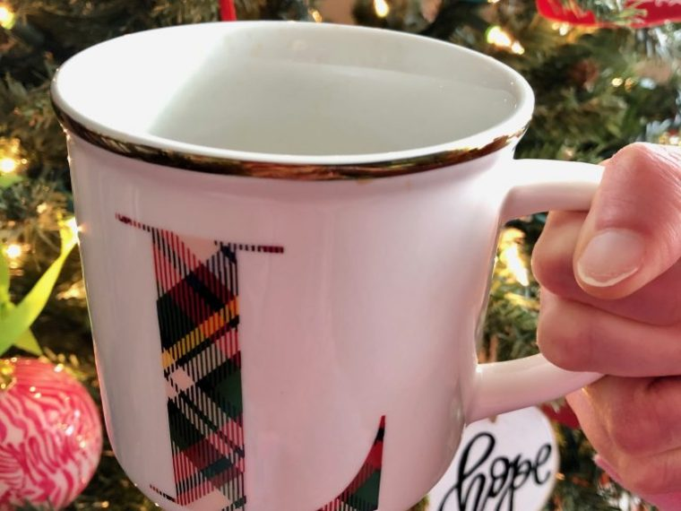 Pottery Barn Plaid Initial Mug