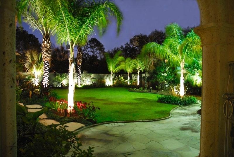 PALM TREES | Palm Garden Depot on Palm Tree Backyard Ideas id=65579
