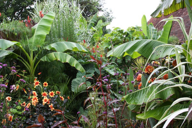 Comment Amnager Un Petit Jardin Good Comment Amnager Son