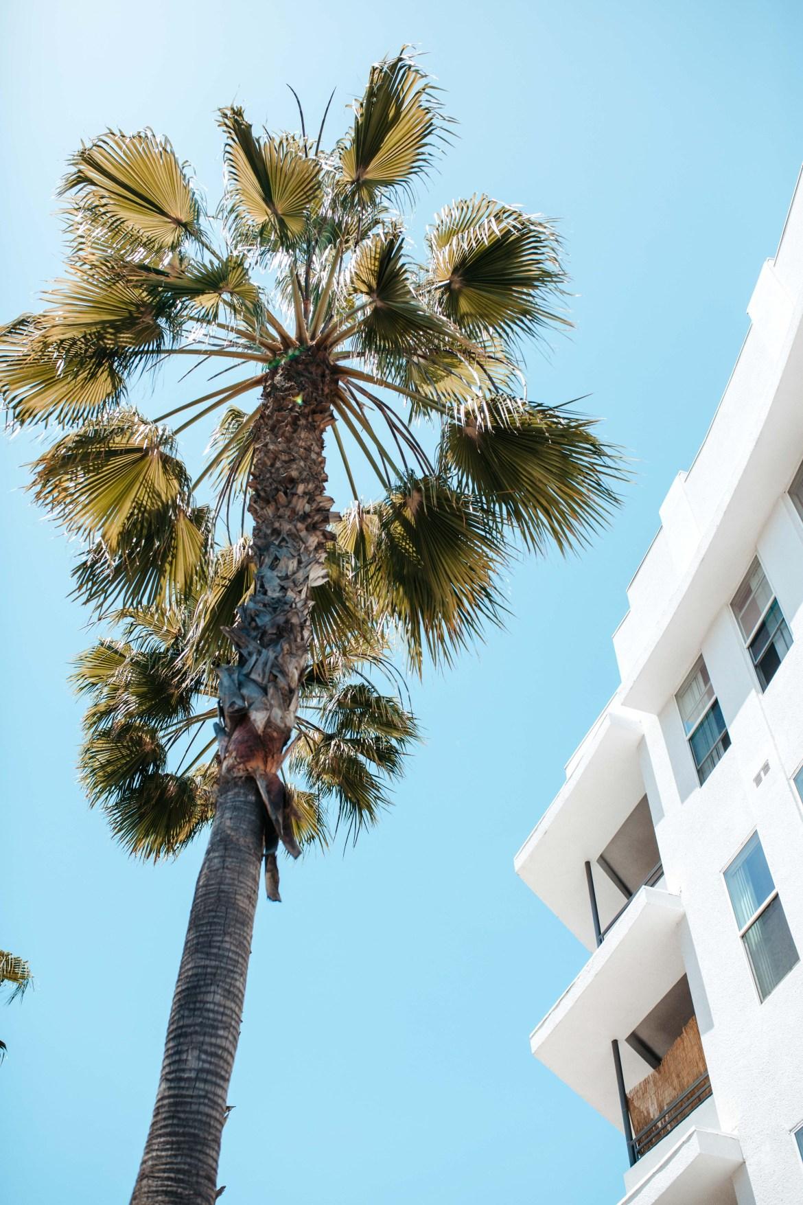 Salon Row | Long Beach | Salon Suites