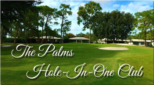 The Palms - 12th-Hole Page Pic