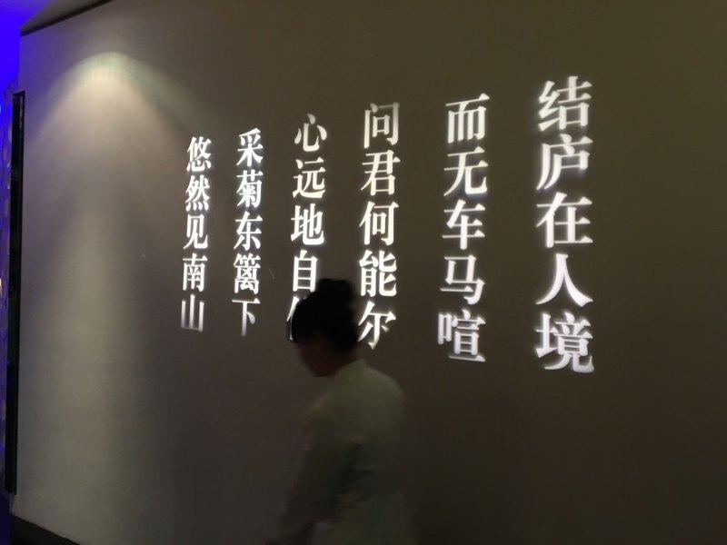 牆上是用投影機打的 陶淵明 飲酒詩,這種裝飾法還蠻有創意的,可以隨時更換。