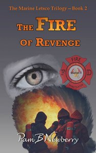 The cover of Book Two: The Fire of Revenge