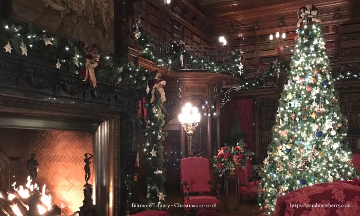 Biltmore Library at Christmas - Photo by Pam