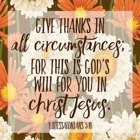 Screen Shot 2017-11-16 at 8.22.57 PM