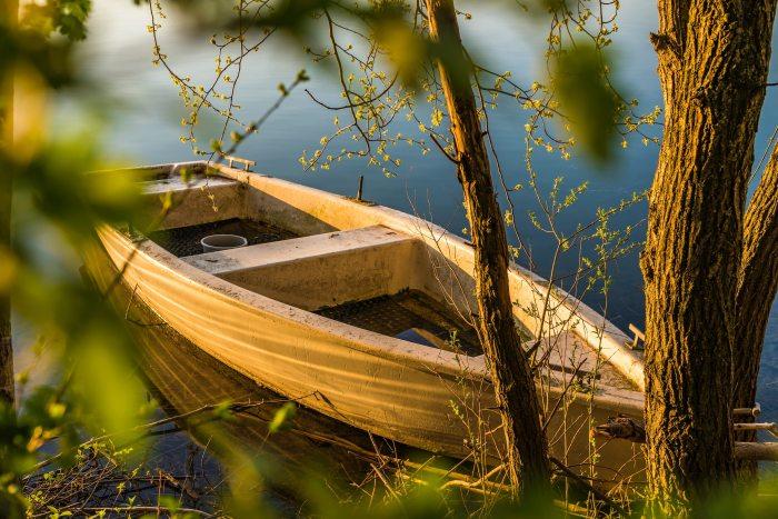 bark-boat-dawn-1039080