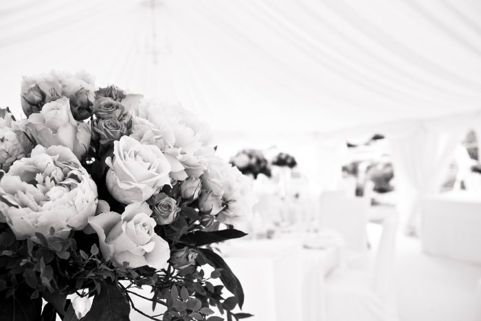 beautiful-flowers-black-and-white-blur-273941