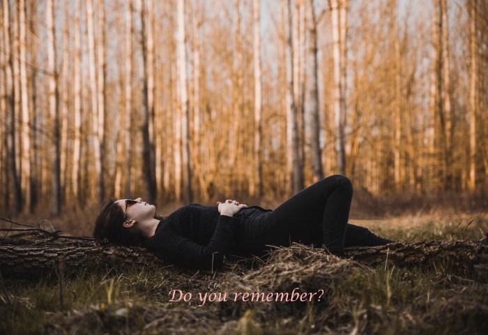 daylight-environment-fall-977107 (2)