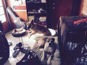 Layla and Georgia