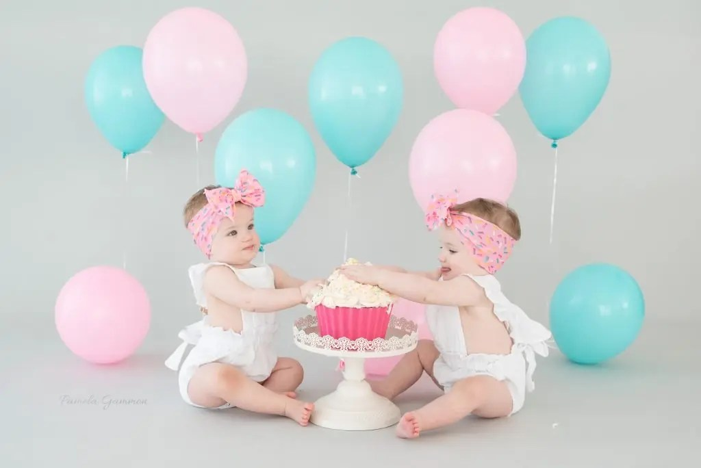 Twin Girl First Birthday Pictures