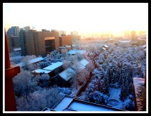 Snowy morning and clear skies