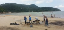 A team of people cleaning the beach, as there was a huge tropical storm a day or so before
