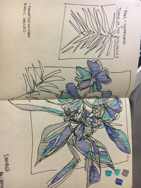 Using a linear style of colouring with fine liners- I used a palette of blues to contrast the green theme of the foliage in the surrounding sketches