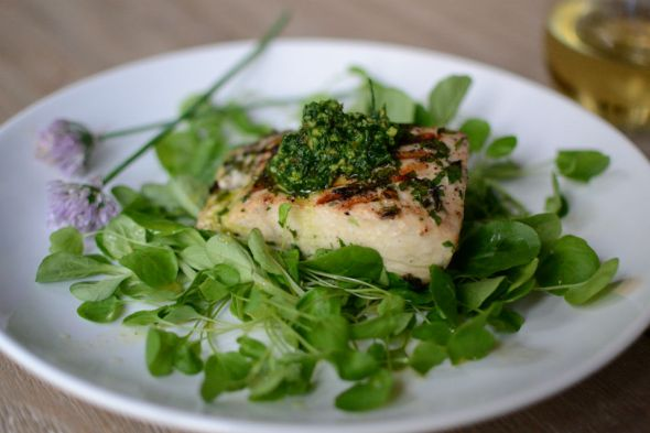 Grilled Halibut with Parsley Chive Pesto