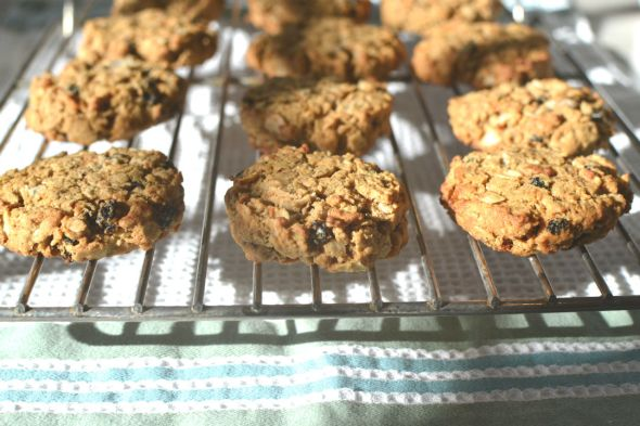 Oatmeal Coconut Currant Cookies