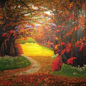 Fall Colour Okanagan