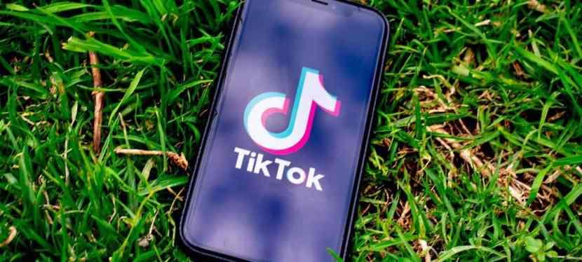 The Power of TikTok Marketing [Infographic]