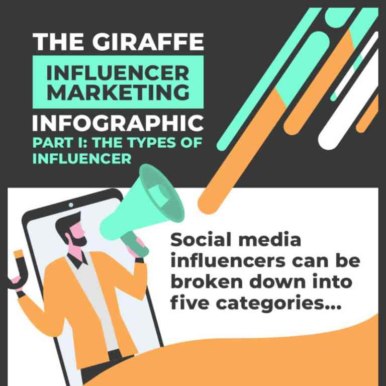 5 Types of Social Media Influencers infographic