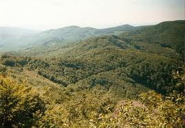 Vihorlatské pohorie