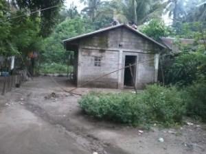 Tinampo-2013-05