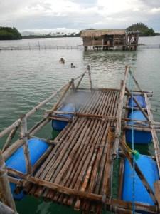 Philippines Mar2013 MikeB 1454