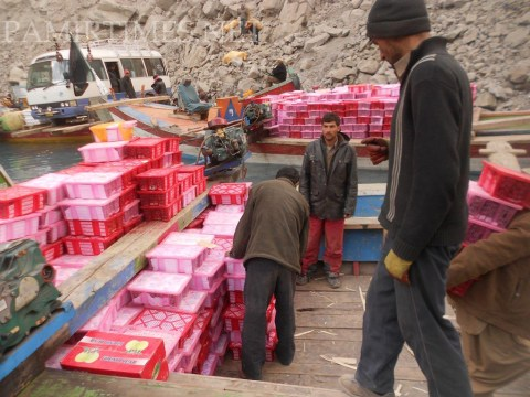 Well packaged fruits from China are being imported in a very large quantity, which damages the local market
