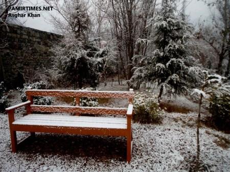 Gilgit Snowfall (8)