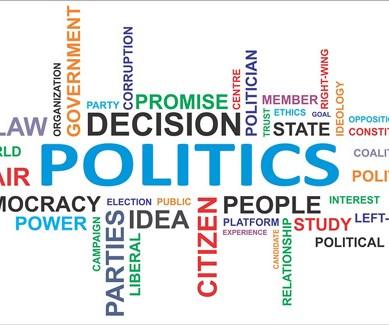 The Sociology of Politics