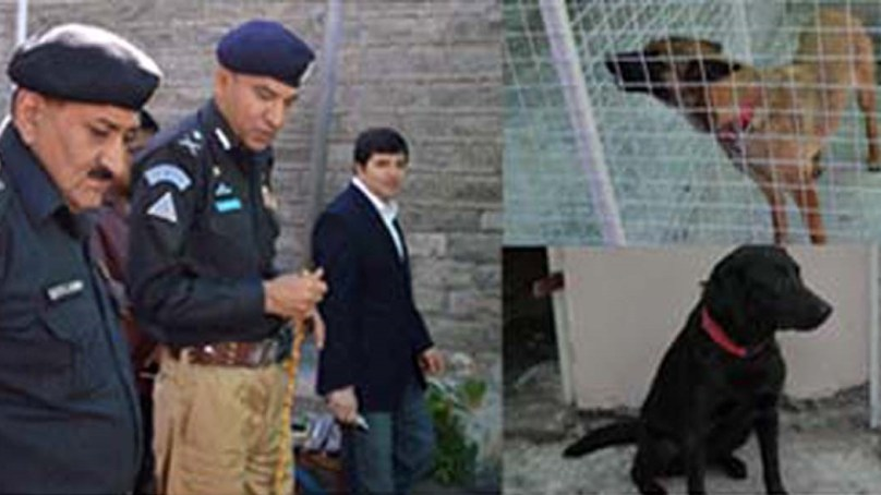 Sniffer Dogs Unit established in Gilgit-Baltistan Police